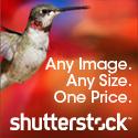 125x125_ShutterStock_banner_2